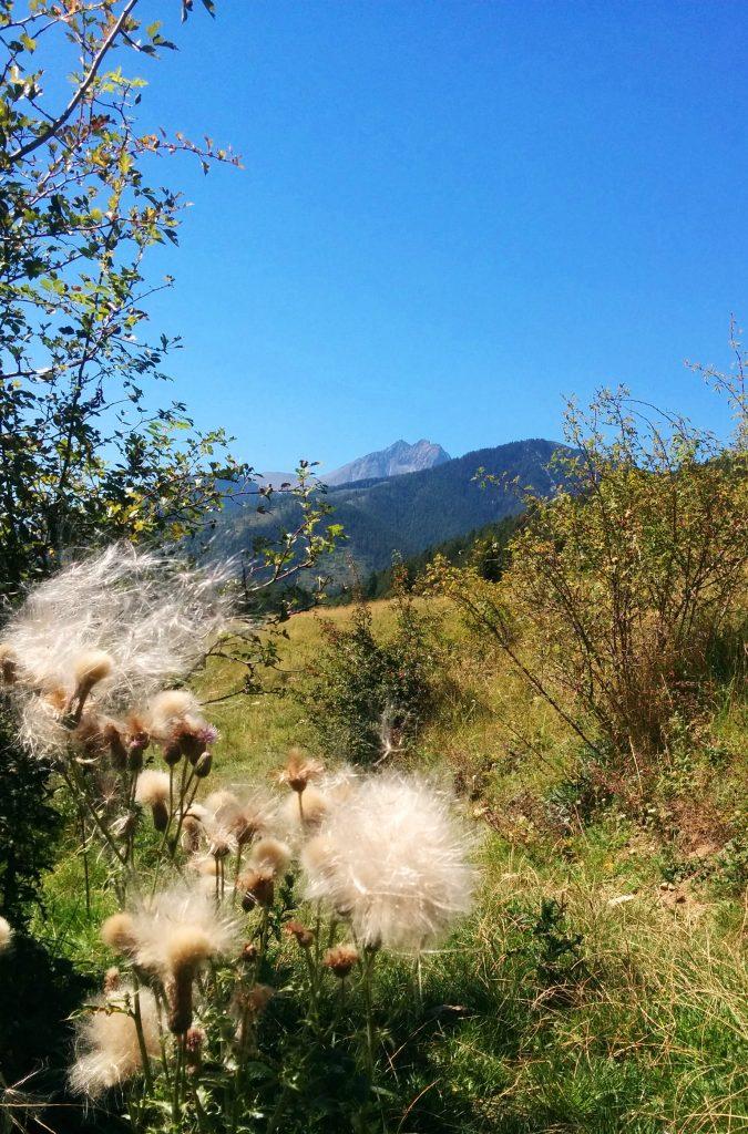 Góry, np Tatry